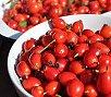 health benefits of rosehips