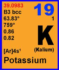 Potassium Intake